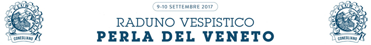 Raduno Vespistico 2014